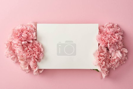 Photo for Top view of blank white card and beautiful pink flowers isolated on pink background - Royalty Free Image