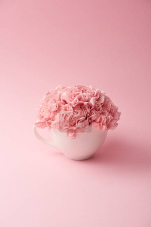 beautiful tender pink carnation flowers in white cup on pink background