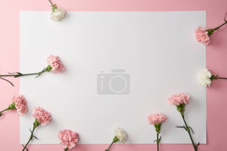 Photo for Top view of beautiful tender carnation flowers and blank card on pink background - Royalty Free Image