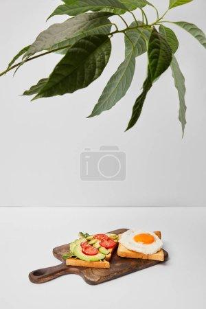 Photo pour Mise au point sélective de la planche à découper en bois avec des toasts et des œufs brouillés sous les plantes vertes sur fond gris - image libre de droit