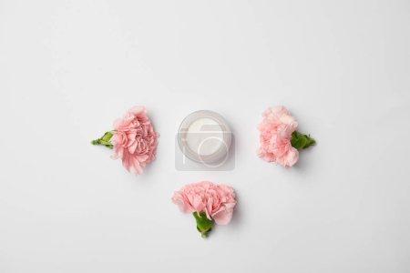 Photo pour Vue de dessus du conteneur de crème et fleurs d'oeillets rose sur fond blanc - image libre de droit