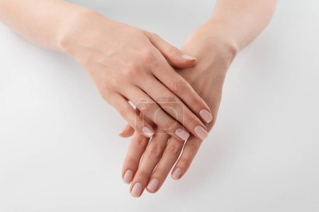 Photo for Partial view of female well-cared clanched hands on white background - Royalty Free Image