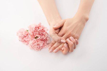 Photo pour Vue partielle des fleurs femelles, mains et oeillets sur fond blanc - image libre de droit