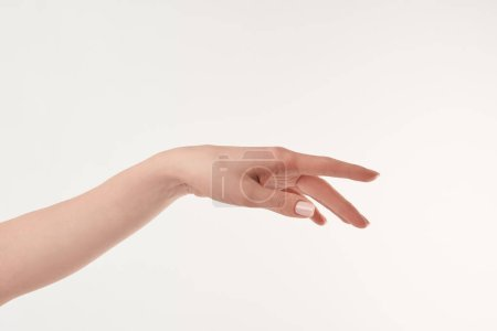 Photo for Partial view of well-cared woman hand on white surface - Royalty Free Image