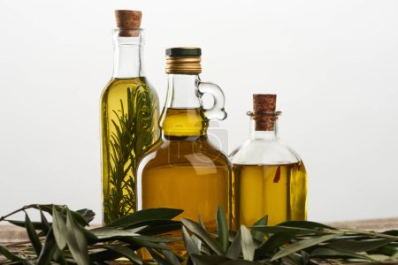 Photo for Bottles of olive oil flavored with rosemary, and olive tree branch isolated on grey - Royalty Free Image