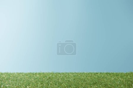 Photo for Fresh bright green grass on blue background with copy space - Royalty Free Image