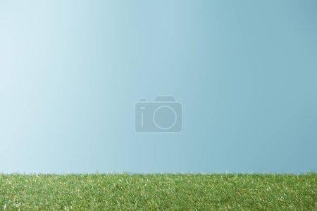 Photo pour Herbe fraîche de vert lumineux sur fond bleu avec espace copie - image libre de droit