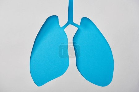 Photo for Top view of empty blue lungs model isolated on white - Royalty Free Image