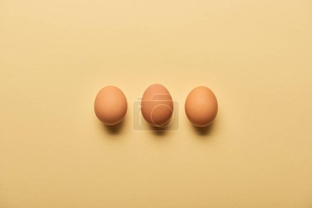 Photo for Flat lay with brown organic eggs arranged in row on yellow background - Royalty Free Image