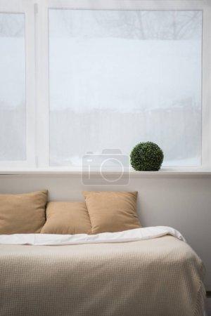 Foto de Habitación con almohadas marrones y blanco manto en cómoda cama, planta - Imagen libre de derechos
