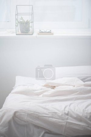 Photo for Bedroom with pillow and white blanket on cozy bed, plant and glasses - Royalty Free Image