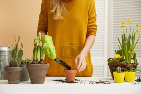 partial view of gardener in sweater filling flowerpot with spade
