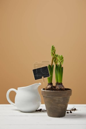 Photo for Hyacinth in clay flowerpot with white jug on table and with copy space - Royalty Free Image
