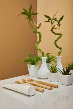 Photo pour Tige de bambou vert dans la vase et les pots avec les plantes, dentifrice en tube, brosses à dents à côté de miroir sur le tableau blanc et fond beige - image libre de droit