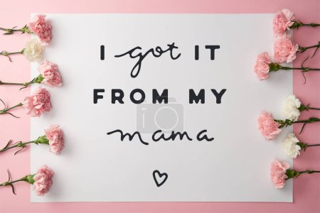 Photo for Top view of beautiful pink and white carnation flowers and greeting card with i got it from my mama lettering on pink background - Royalty Free Image