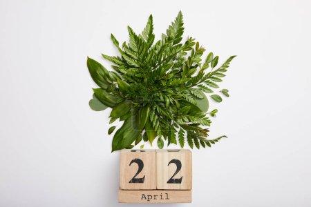 Photo pour Composition de feuilles de fougère vert frais et calendrier des blocs de bois isolés sur fond gris, notion de jour de la terre - image libre de droit