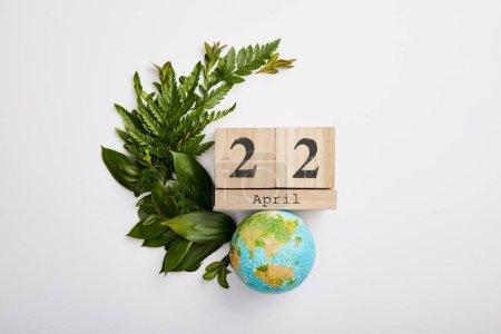 Foto de Composición de hojas de helecho verde fresco y calendario de bloques de madera, aislado en fondo gris, concepto de día de la tierra - Imagen libre de derechos
