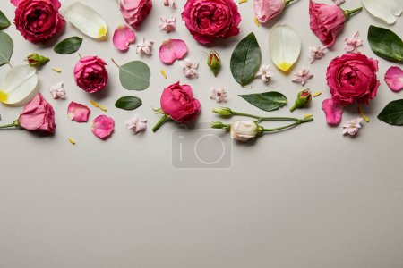 Photo for Top view of pink roses, leaves, buds and petals isolated on grey with copy space - Royalty Free Image