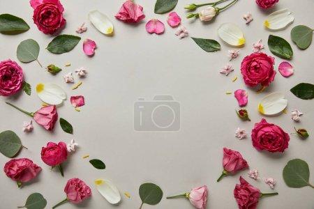 Photo pour Vue de dessus du cadre floral rond en roses et pétales roses avec espace de copie isolé sur gris - image libre de droit