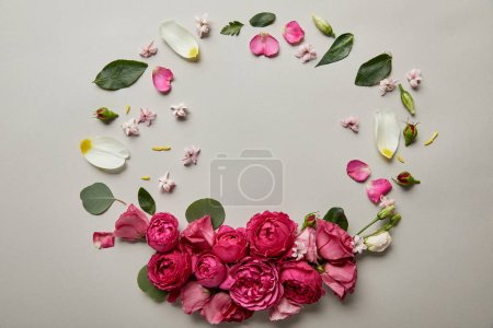 Photo for Top view of round floral frame made of pink roses and petals with copy space isolated on grey - Royalty Free Image