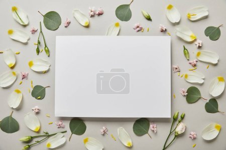 top view of blank white card with leaves and petals isolated on grey