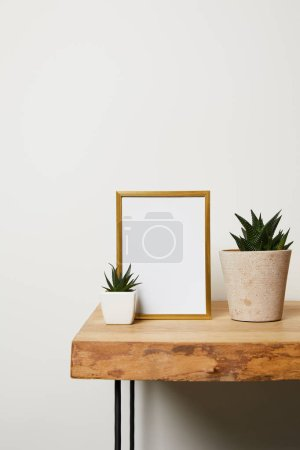 decorative frame near green plants in pots at home
