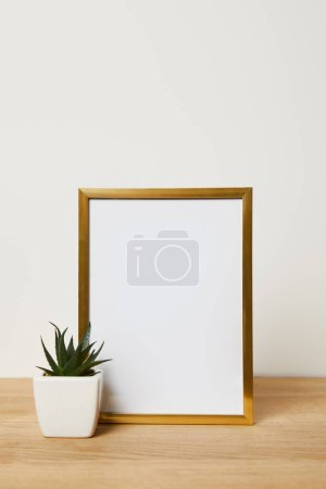 decorative frame near green cactus in pot at home