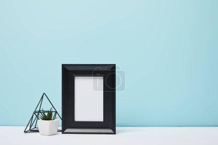 schwarzer quadratischer Rahmen nahe grüner Pflanze auf weißer Oberfläche