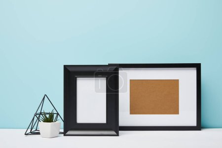 black square frames near green plant in pot on table