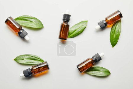 Photo pour Pose plate avec des bouteilles d'huile essentielle avec des feuilles vertes sur fond gris - image libre de droit