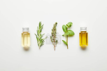 Photo for Top view of essential oil, rosemary, thyme and mint on white background - Royalty Free Image
