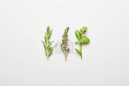 Photo for Top view of rosemary, thyme and mint on white background - Royalty Free Image