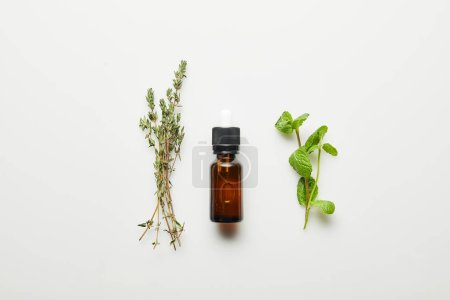 Photo pour Vue de dessus de l'huile essentielle, thym et menthe fraîche sur fond blanc - image libre de droit