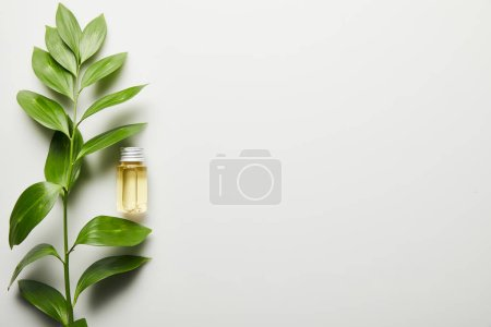 Photo for Top view of essential oil in bottle and green leaves on white background - Royalty Free Image