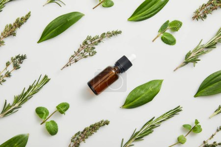 Photo for Flat lay with bottle of essential oil and fresh herbs on grey background - Royalty Free Image