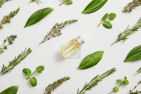 Photo for Flat lay with essential oil and fresh herbs on grey background - Royalty Free Image