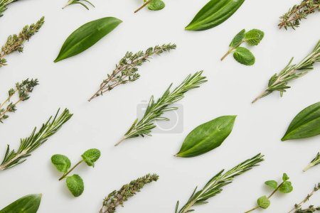Photo for Flat lay with mint, rosemary and thyme on grey background - Royalty Free Image