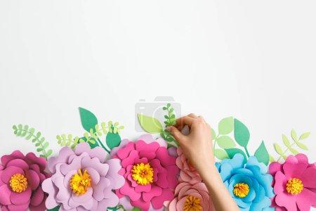 Photo pour Recadrée vue de femme putting green usine près de fleurs en papier multicolores sur fond gris - image libre de droit
