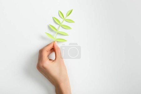 Photo for Cropped view of woman putting green paper plant with leaves on grey background - Royalty Free Image