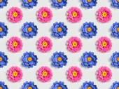 """Постер, картина, фотообои """"Цветы голубые и розовые бумаги на серый, бесшовных фоновый узор"""""""