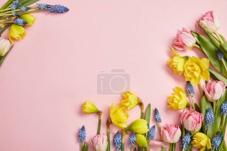Top view of pink tulips, blue hyacinths and yellow...