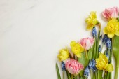 top view of beautiful pink tulips, blue hyacinths and yellow daffodils on white background