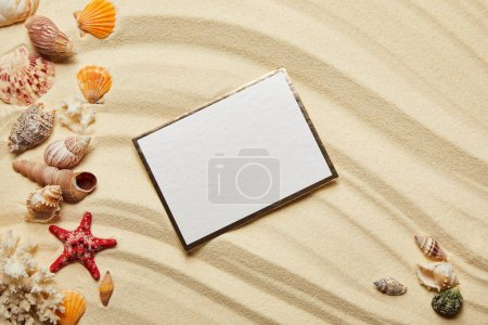 Photo for Top view of blank placard near seashells, red starfish and corals on sandy beach - Royalty Free Image