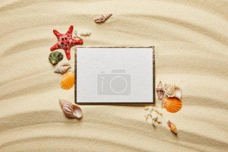 Photo pour Vue du dessus de la plaque vierge près des coquillages, des étoiles de mer et des coraux blancs sur la plage de sable - image libre de droit