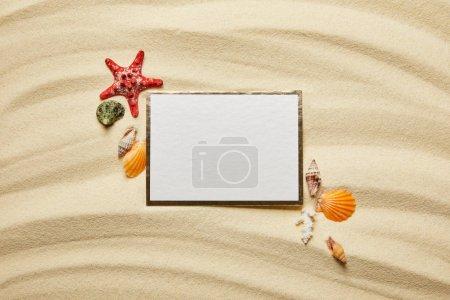 vista superior de la pancarta en blanco cerca de conchas marinas, estrellas de mar rojas y coral blanco en la playa de arena