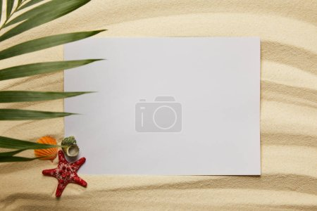 Photo for Top view of green palm leaf near blank placard, starfish and shells on sand - Royalty Free Image