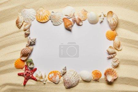 Foto de Marco de conchas marinas cerca de una pancarta en blanco en la playa de arena - Imagen libre de derechos