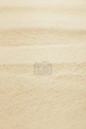 Selektiver Fokus des goldenen Sandstrandes im Sommer
