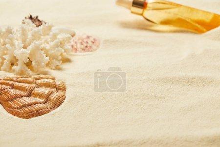 Photo pour Foyer sélectif de coquillage près de corail blanc et bouteille d'huile de bronzage sur le sable - image libre de droit