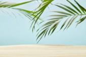 """Постер, картина, фотообои """"зеленые пальмовые листья возле золотого песчаного пляжа на голубом"""""""